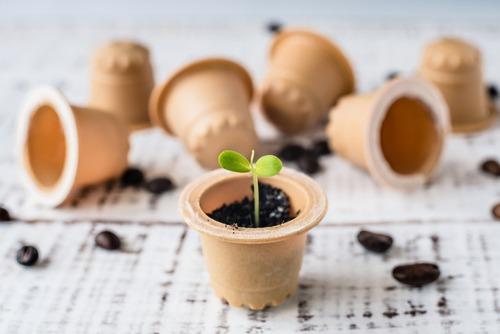 plastique compostable biodégradable