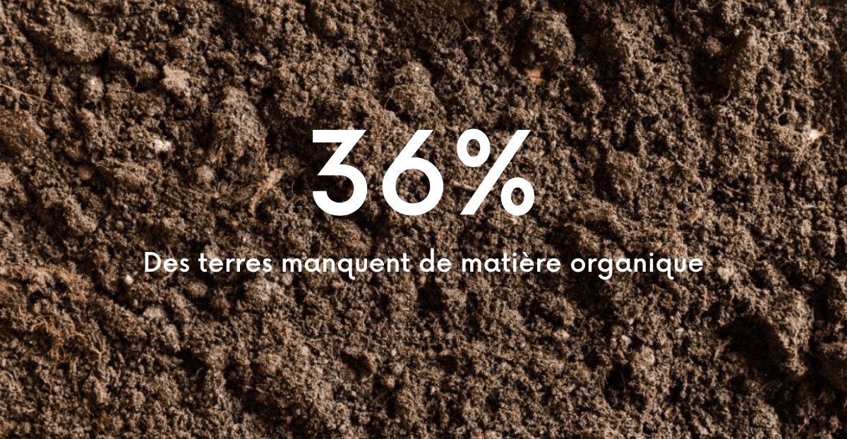 compostage et matière organique