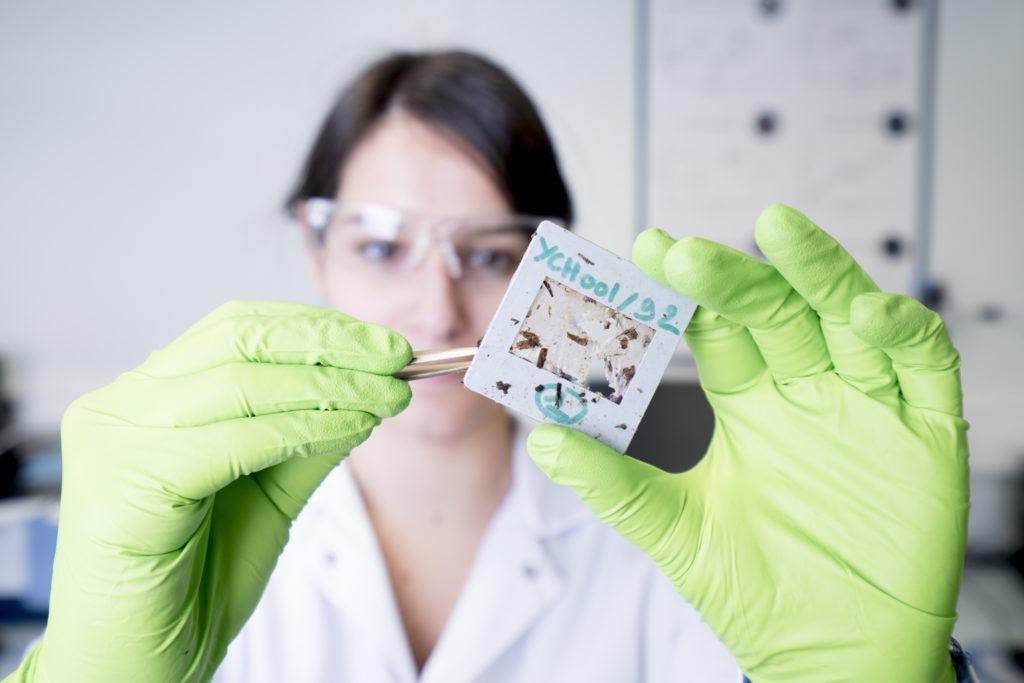 biodegradation system